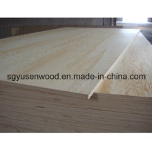 AAA Grade Birch Plywood for American Market